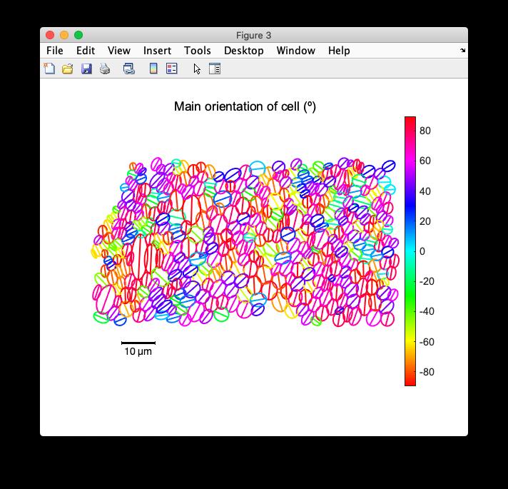 static/ExampleResults_fig3_EllipseFit.png